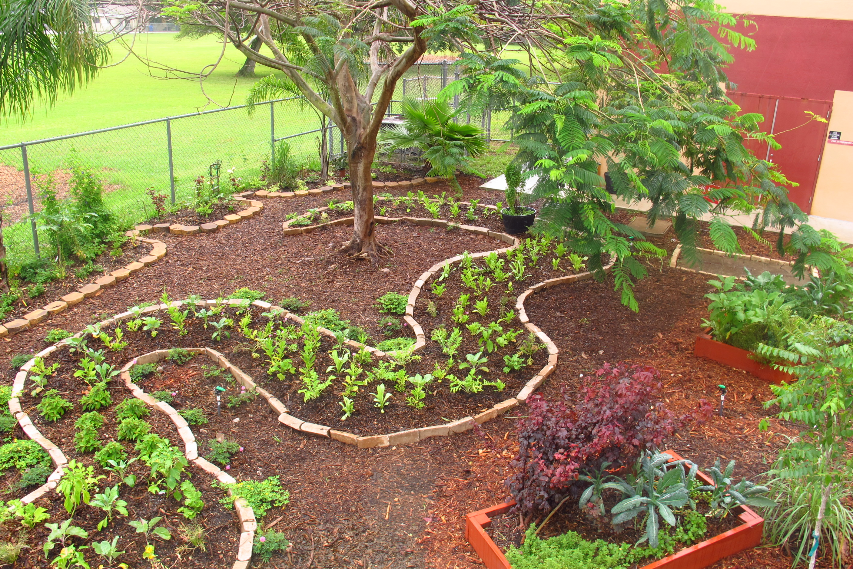It takes a forest to feed an elementary school for Forest garden design zone 4