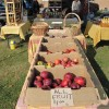 Fairfield's downtown farmer's market is organized by a couple who say they needed a new source of income after one of them lost a job.