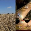 A harvesting combine, which is considered personal property, is tax-exempt in Idaho.  A restaurant's wine glasses are taxable personal property.