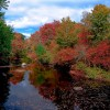 Leaf Peeping Brings $1 billion into New Hampshire