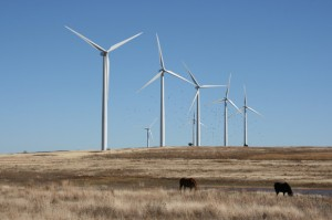 The 147-megawatt Weatherford Wind Energy Center.
