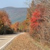 The Talimena National Scenic Drive (pictured above) starts at Talimena State Park and extends 54 miles into Arkansas.