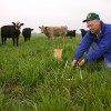 In an experimental pasture at the Grazinglands Research Laboratory near El Reno, Oklahoma, ecologist Brian Northup collects samples to describe availability and quality of forage.