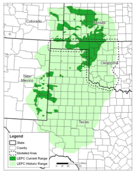 The current and historical range of the Lesser Prairie Chicken.