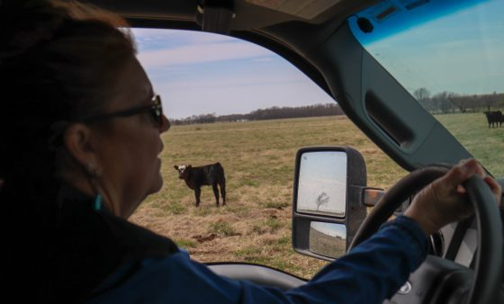 Terry Sue Barnett drives through her pasture in Nowata County.
