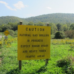 "A sign posted in Susquehannock state forest, which makes up part of the most ""climate resilient"" land on the East Coast.."