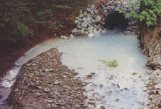 Acid mine drainage often turns a stream orange and smothers all aquatic life. In this case, aluminum has turned the stream lifeless.