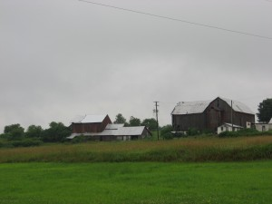 A farm in Wayne County sits on top of the Marcellus Shale formation. Drilling has not begun in the area of the state that drains into the Delaware River.