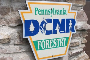 The state Department of Conservation and Natural Resources says it will release drilling plans for the Loyalsock State Forest and take public comments on them for 15 days.