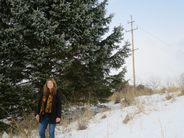 The new route of the PennEast pipeline would cross Angele Switzler's farm in Delaware Township, New Jersey. The company wants to site the pipeline along the power lines that border her property.