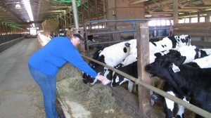 Lisa Graybeal is a third generation dairy farmer in Lancaster County.