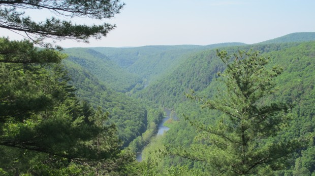 The Pine Creek Gorge in Tioga County.