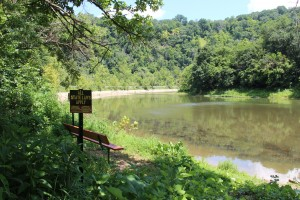 The DEP is investigating high radium readings along Ten Mile Creek in southwestern Pennsylvania.