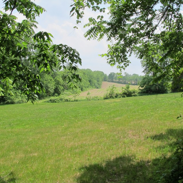 Part of the proposed PennEast pipeline could run through this stretch of land in Bucks County, Pa.