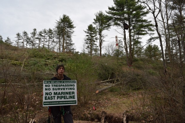 Elise Gerhart stands with a protest sign by an area of tree-clearing on her parents land.