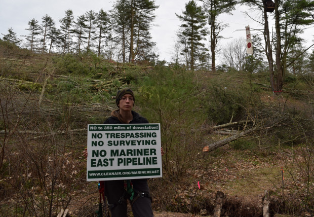 Elise Gerhart stands with a protest sign by an area of tree-clearing on her parents land. The Gerhart's lost their appeal to the Commonwealth Court. Although trees have been cleared, construction has not yet begun.
