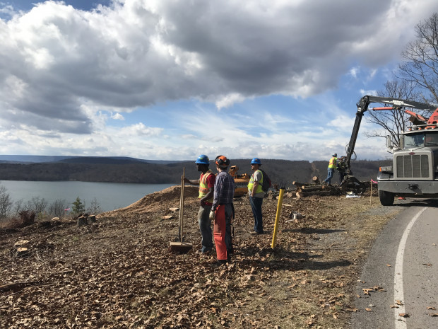 Crews working for Sunoco Logistics clear trees for the Mariner East 2 pipeline at Raystown Lake in Huntingdon County.
