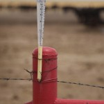 An empty rain gauge near Canadian Texas.