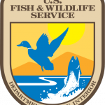 u s fish and wildlife service stateimpact texas