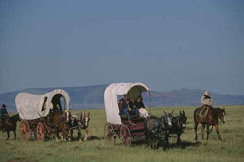 Wagon Train Re Enactment On The Cherokee Trail Wyoming
