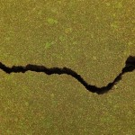 Scientists have drawn definitive links between hydraulic fracturing disposal wells and induced earthquakes. The photo above shows a crack in a road after a natural earthquake in 2011 in Christchurch, New Zealand.