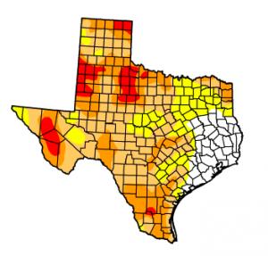 Daniel Ramirez StateImpact Texas