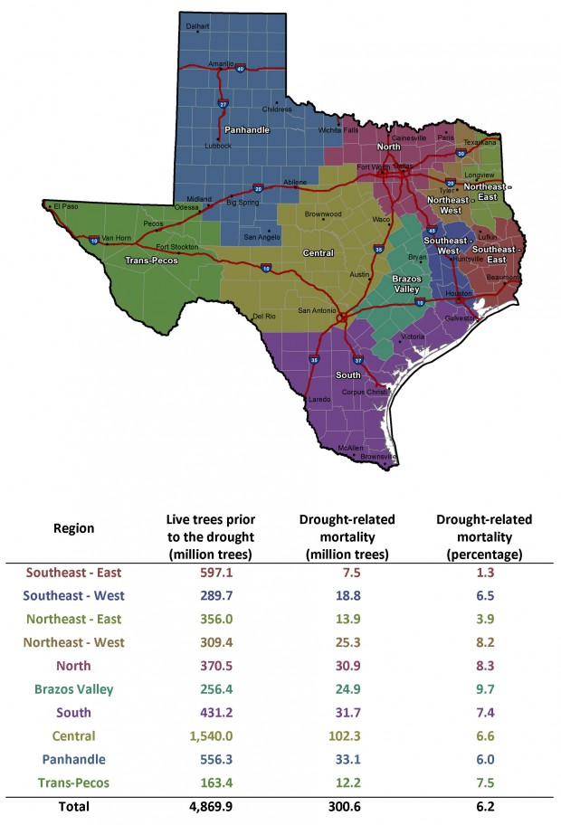 Map Of Texas Forests.The Final Numbers Are In Over 300 Million Trees Killed By The Texas