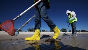 Workers clean tarballs from the BP oil spill on Waveland beach December 6, 2010 in Waveland, Mississippi.