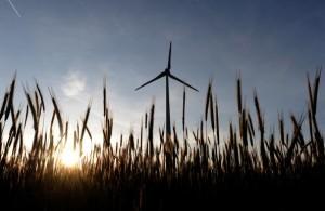 A wind turbine  rises above field in Burgenland near the Austrian-Slovakian border