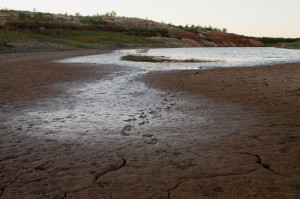 E.V. Spence Reservoir in Robert Lee Texas is running dry. The latest iteration of the Texas Water Plan could help Texas' water supply, if it is funded.