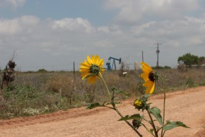 Oil well in Frio County
