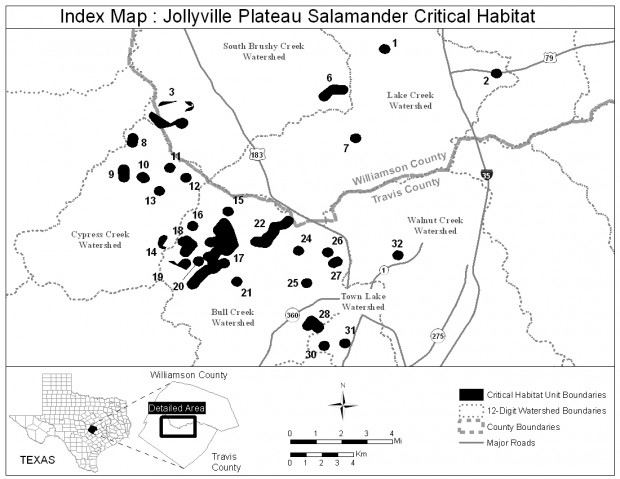 The critical habitat for the Jollyville Plateau salamander.
