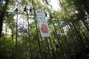 Activists took to the trees to try to stop the Keystone XL Pipeline in East Texas.