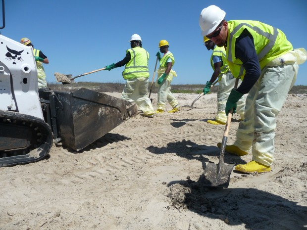 Workers scraped oil-drenched sand from the beaches of Matagorda Island.