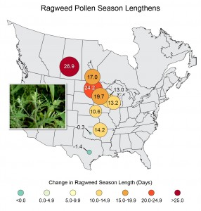 Map shows for how long ragweed pollen season has changed from 1995 to 2005.
