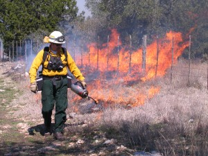 A fire official with the Wildland Conservation Division starts a blaze with a drip torch at a 2009 prescribed burn on Water Quality Protection Lands in Hays County.